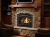 Picture for category Vented Gas Fireplaces